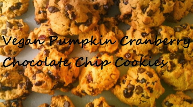 Vegan pumpkin cranberry chocolate chip cookies! (recipe)