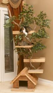 http://www.catpalaceusa.com/designer_cat_tree.html