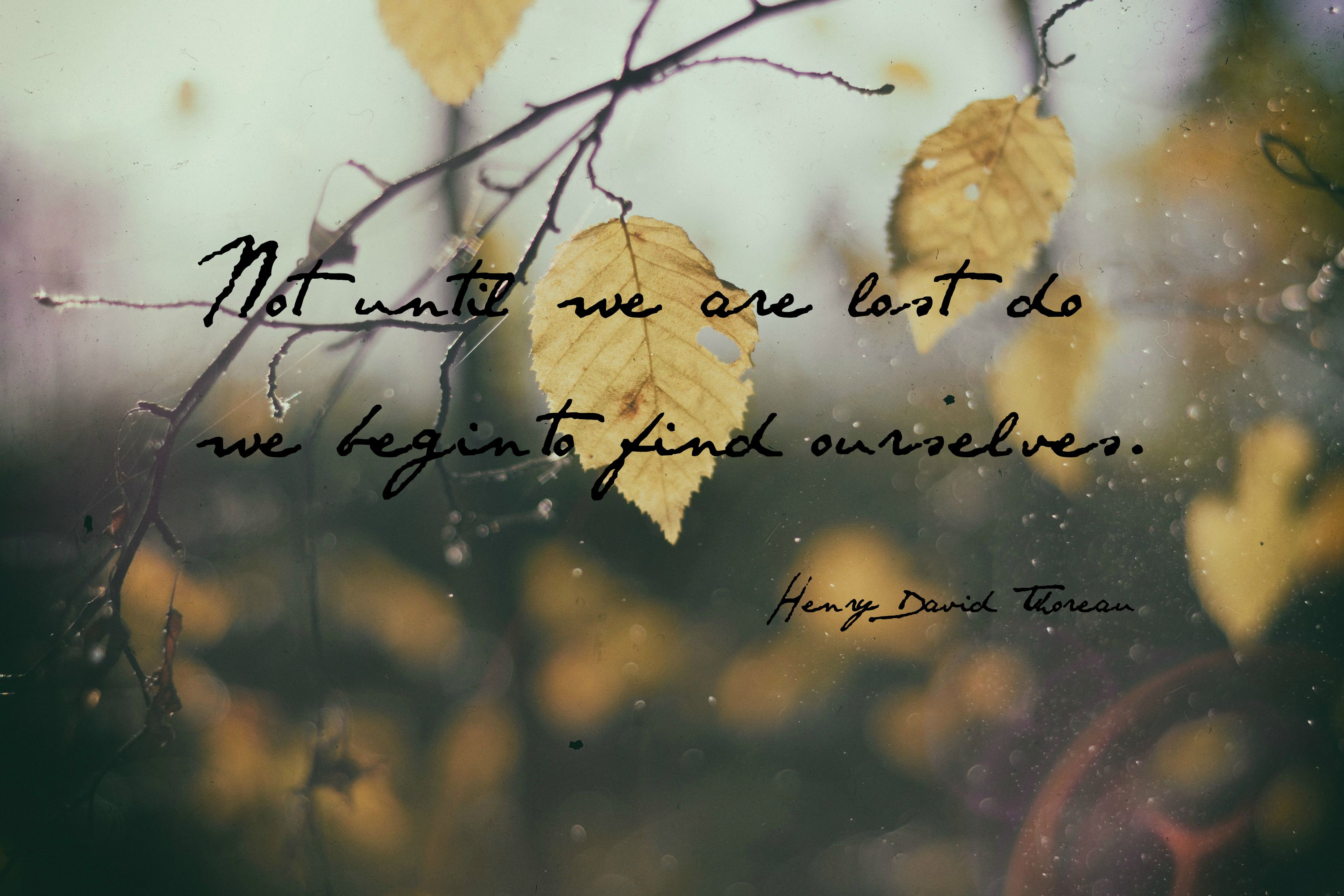 """Not until we are lost do we begin to find ourselves."" --Henry David Thoreau"