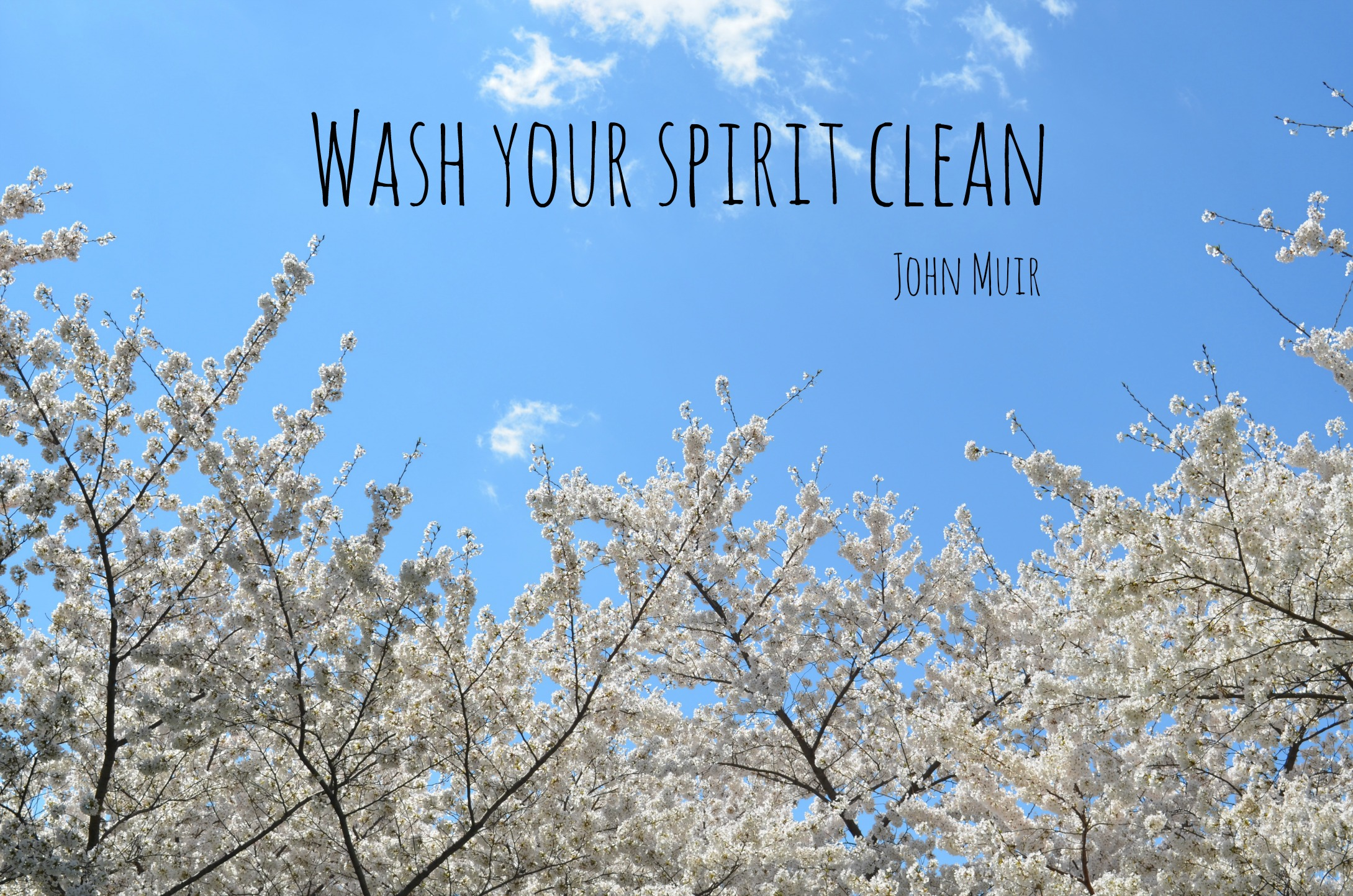 """Wash your spirit clean"" (John Muir quote) (spring cleaning)"