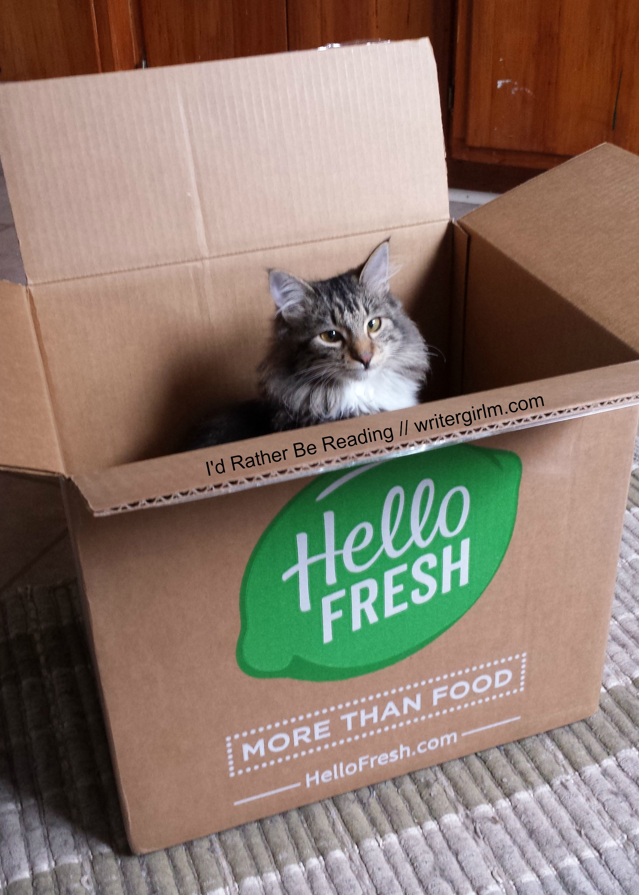 Even Ezio was excited to get a taste of my Hello Fresh order!