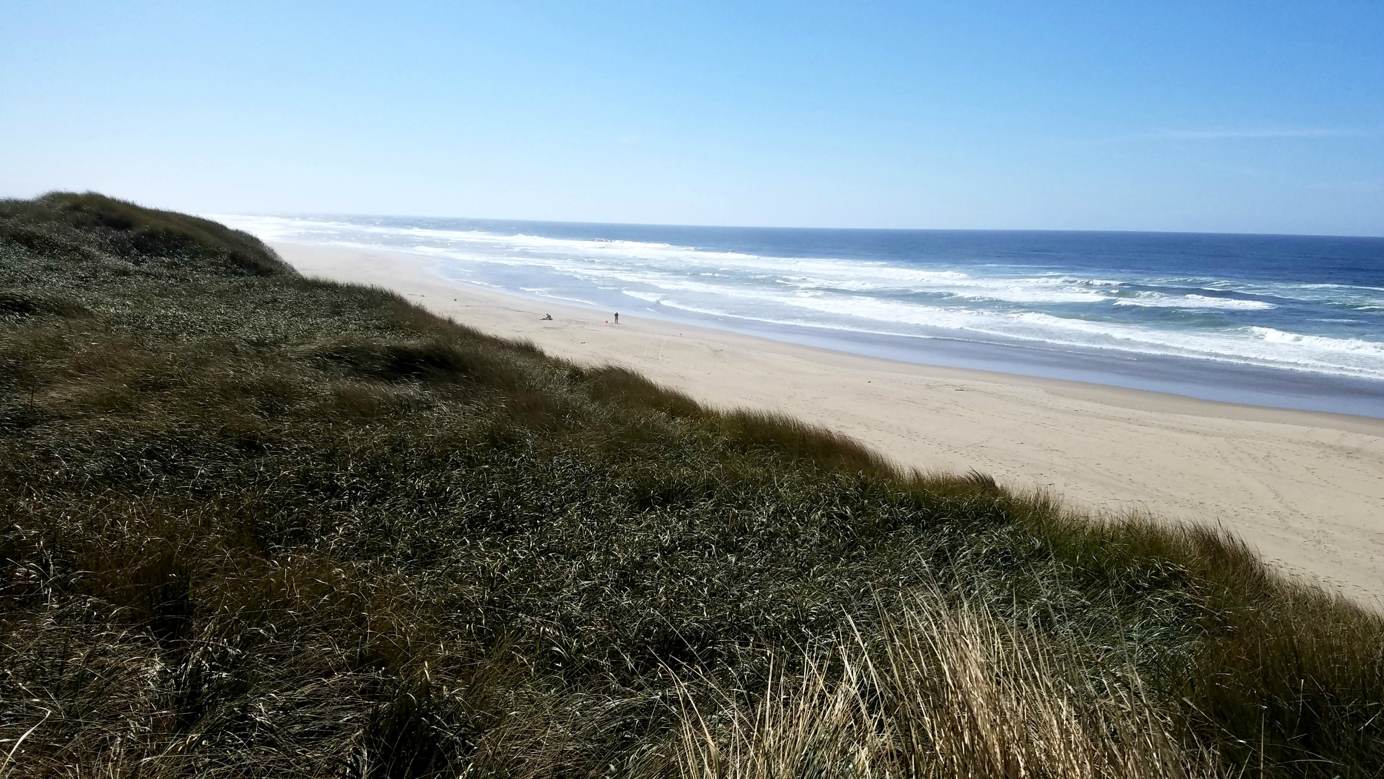 Oregon Dunes near Florence, Oregon
